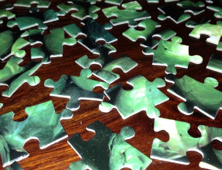 jigsaw pieces - landscape version